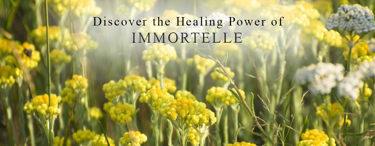 immortelle-homepage-1.jpg