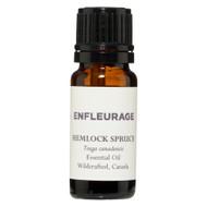 Spruce Hemlock