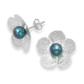Sterling Silver Large Flower studs with Grey freshwater Pearl - Size: 19mm 5640GR