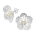 Sterling Silver Large Flower studs with white freshwater Pearl - Size: 19mm 5640WH
