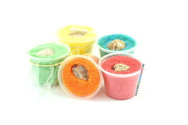 Delicious treat made of sugar in a variety of different colors such as a rainbow with a salty prune inside. This sweet comes in a small plastic cup and is full of sweetness, salt and a tasty citrus flavor.