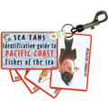 """Sea Fans Fish """"ID"""" Identification Guide Cards Pacific Coast Snorkeling Dive SF10"""