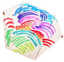 Frustrationless Flier - Acrylic Paints
