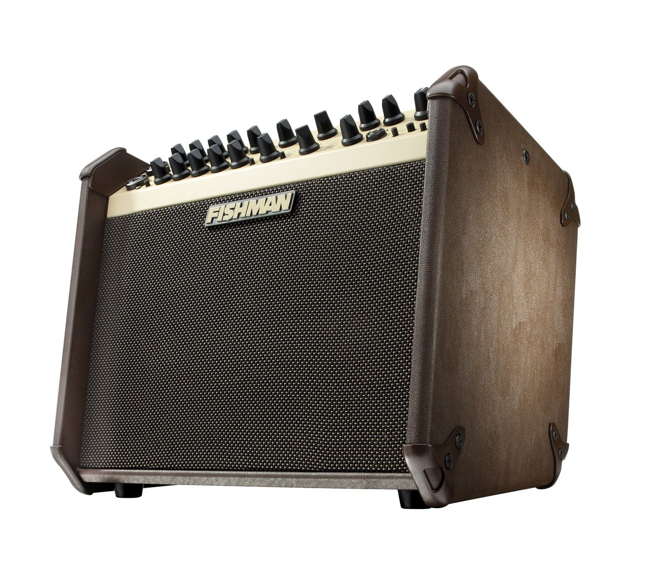 Fishman Loudbox Artist 120-watt Acoustic Guitar Amplifier - XLR DI Output - View 6