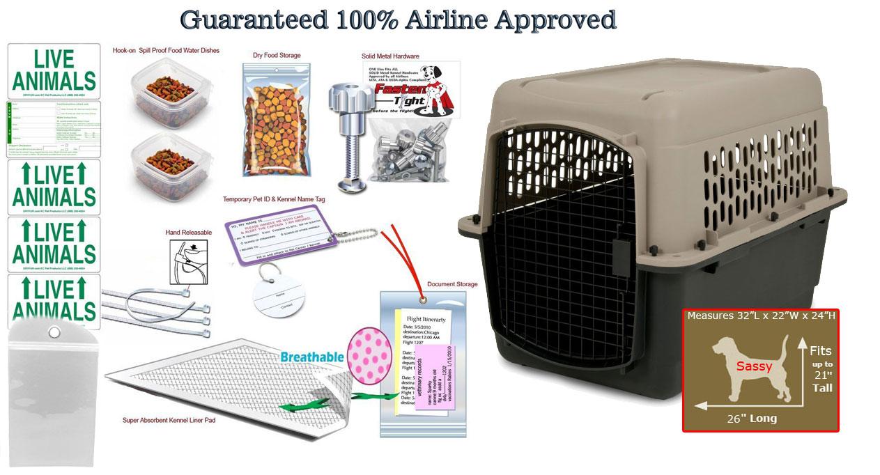 Sassy airline travel package.jpg