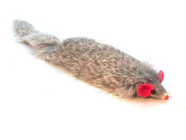 Dat Darn Ferret Cat Toy
