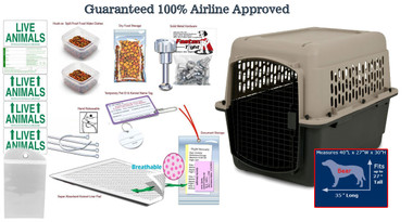 Bear all in one Pet travel airline approved crate package