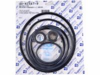 Seal & Gasket Kit for Sta-Rite J Series Pool Pumps GO-KIT47 (SPG-601-1720)