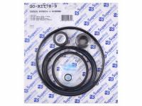 Pentair Superflo / Supermax Pump Repair Kit GO-KIT78-9 (SPG-601-6101)