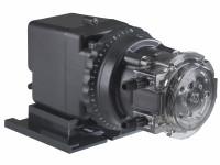 ".25"" Adj 1-head Classic Pump - GHS-45-820"