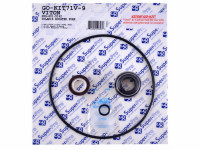 Viton Polaris Pb4 Pump Seal Kit, Before 12-1-11, GO-KIT71V-9 (SPG-601-5142)