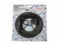 Viton Sta-Rite P2R Pump Seal Kit, GO-KIT6V-9 (SPG-601-5104)