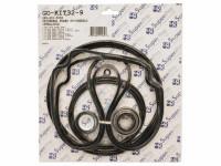 Seal & Gasket Kit for Pentair WhisperFlo & IntelliFlo Pool Pumps GO-KIT32 (SPG-601-5032)