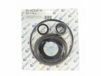 Purex C-Series Pump Seal Kit GO-KIT31-9 (SPG-601-1403)