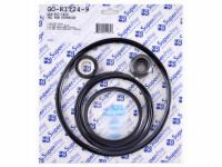 Super-Pro Gasket & O-Ring Kit for Pac Fab Pinnacle Pump GO-KIT24-9 (SPG-601-1402)