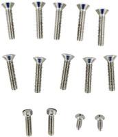 Pentair Screw Kit Niche 10 Hole 79205400 (AMP-301-6673)