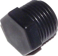 Pentair 1/2 Inch Threaded Plug R172134 (RAI-451-4031
