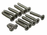 Hayward Self-tapping Screw Set SPX0507Z1A (HAY-301-8907)