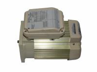 Almond 56y Tefc Sqfl Motor - PAC-101-5269