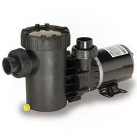 Speck Pumps E71-III, 1 HP, 2 Spd, Vertical Pump (AG192-2100S-VST)