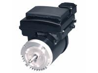 Variable Speed Threaded Motor