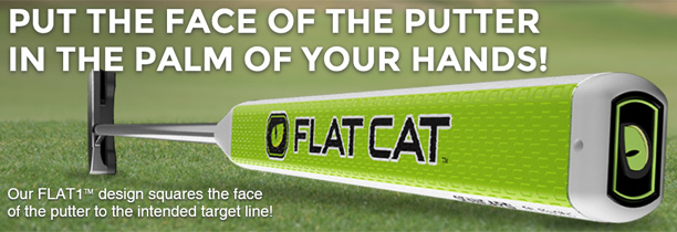 flat-cat-golf-putter-grip-in-the-palm-of-your-hands.jpg