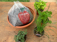 Kit includes soil, planter 14x6, and four 4-inch herbs of your choosing.