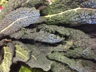 Kale - Toscano organic