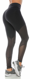 Protokolo Hollis BlackLegging