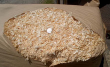 Paper-bagged wood shavings. 9 cubic feet compressed to 3.25 cubic feet