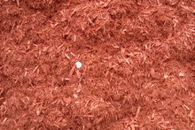 White cedar mulch dyed red