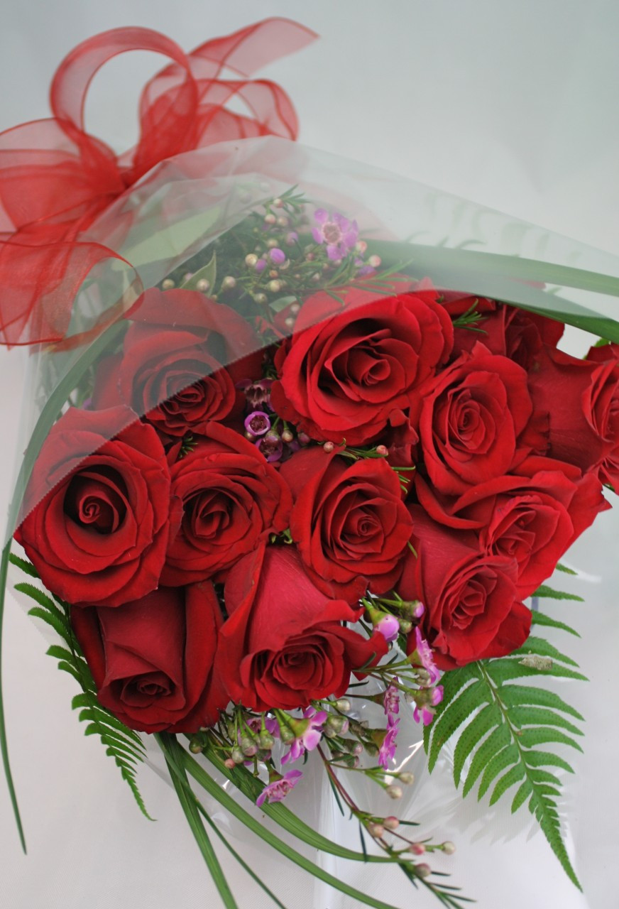 Buy The Bunch Of Red Roses Belvedere Flowers Of Havertown Pa