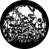 GAM 252 Wildflowers