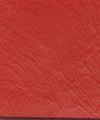 Key West Bright Red