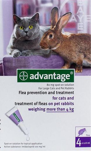 Advantage Purple 4 Pack Large Cats over 9 lbs
