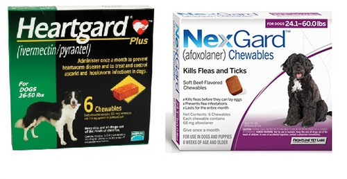 NexGard and Heartgard Combo for Dogs 24.1 - 50 lbs - 6 Pack