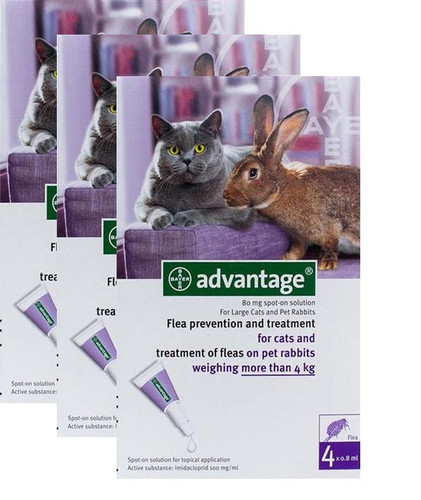 Advantage Purple 12 Pack Large Cats over 9 lbs