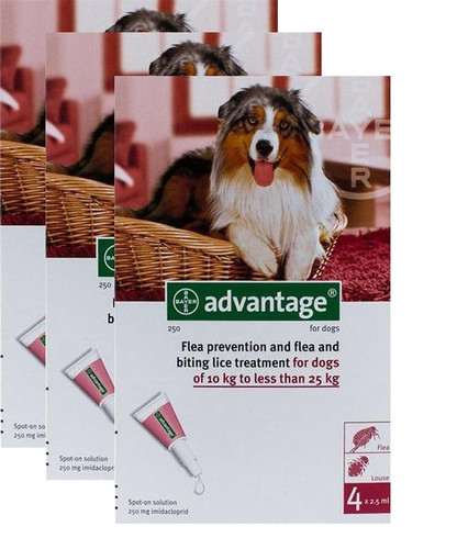Advantage Red 12 Pack Large Dogs 21-55 lbs