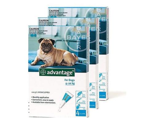 Advantage Aqua 12 Pack Medium Dogs 11-20 lbs