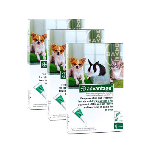 Advantage Green 12 Pack for Small Dogs & Cats up to 9 lbs