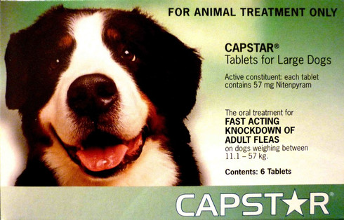 Is Comfortis Safe For Breeding Dogs