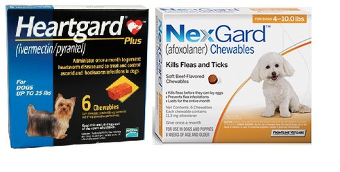 Nexgard And Heartgard Combo For Dogs 4 10 Lbs 6 Pack