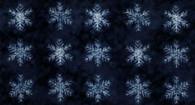 Yuki - Dark Blue Snowflakes