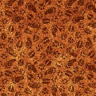 Timberland Trail - Animal Tracks - Rust