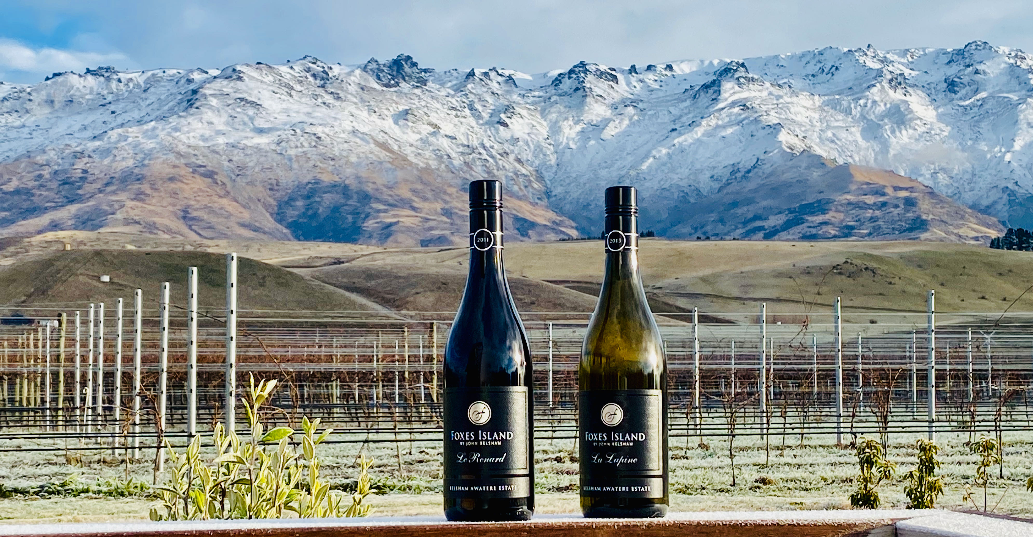 Foxes Island Icon Wines NZ Winter