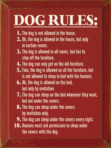 Dog Rules 1 The Dog Is Not Allowed In The House 2 Ok
