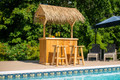 Finished Southern Fantasy Tiki Bar Kit With Palm Thatch Roof