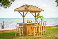 Finished Tropical Paradise Tiki Bar Kit With Palm Thatch Roof