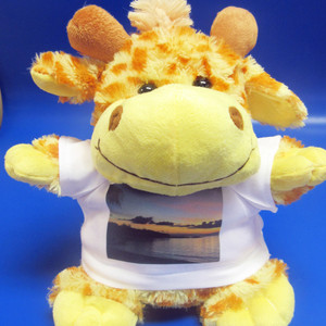 Personalised Jasmine Giraffe Soft Toy From Something Personal