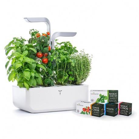 Veritable Smart Indoor Garden & 4x Lingots